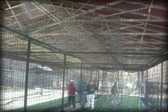 Batting Cage Canopy