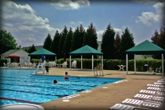 Pool Side Canopies