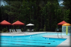 Community Pool Canopies